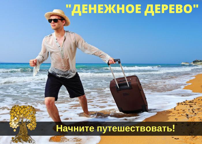 Дмитрий Чернышов Денежное Дерево обзор