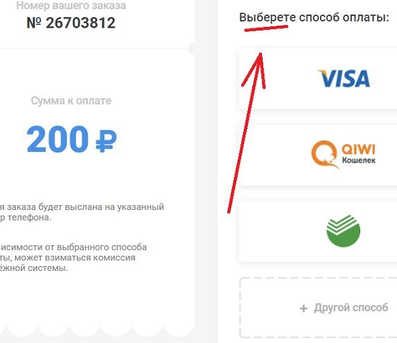по рублю со всех участников - платёжная система фальшивая