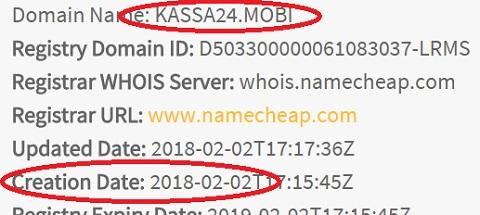 сайт vip opros просит оплату через kassa 24 mobi