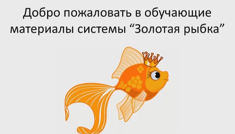 Ксения Фролова Золотая рыбка отзывы