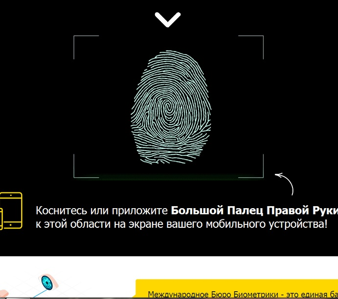 сдайте cвои отпечатки пальцев в международное бюро биометрики прямо через специальную область своего экрана