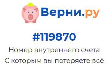 отзывы и обзор про социальные выплаты в интернете и про сайт verni cash ru или верни ру где предлагается вернуть невыплаченные выплаты за опрос в интернете - пишем отзывы и обзор