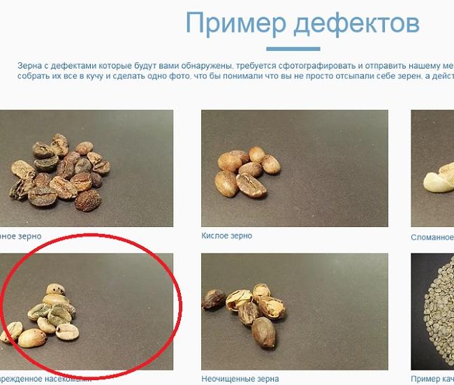 rabotavdom ukr net - фотографии украдены из другой статьи