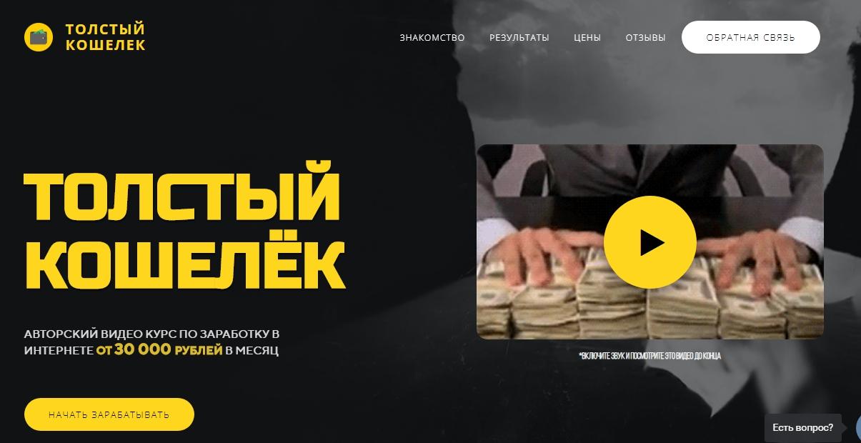 Толстый кошелек Алёна Красавина отзывы