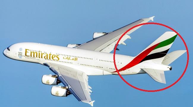 oae nocoronavirus украл логотип флага с сайта местной авиакомпании