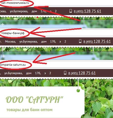 у компании есть копии по адресу http sat moscowrussia ru и по адресу http kompania saturn su