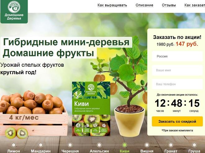 экодар и домашние фруктовые мини-деревья - осмотр сайта чтобы написать о нём отзывы и обзор