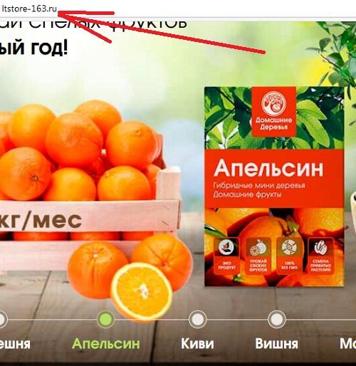сайт Домашние Деревья есть и по другим адресам, например на сайте ltstore-163 ru